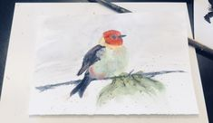 Water colors #bird #me #color