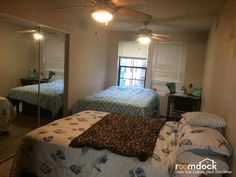 $750 - Shared room in Pacific Beach! #pacificbeach #sandiego #rent ...