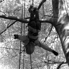 #accrobranche #sport #oxylanevillage #ropes #arbre #tree #parcours #parcoursarbres