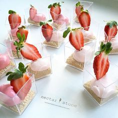 Nectar and Stone have created these #strawberry and #cheesecake pots #nectarandstone.