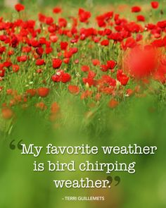 """""""My favorite weather is bird chirping weather."""""""