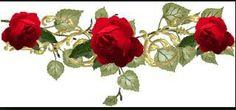 Roses on vine