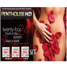 abonnement penthouse hd + 4 chaînes satisfaction - 12 mois