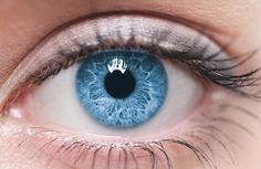 close up blue eye Pretty Eyes, Cool Eyes, Beautiful Eyes, Simply Beautiful, Eye Close Up, Human Eye, Eye Photography, Blue Aesthetic, Eye Color