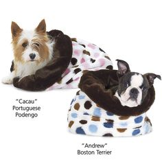 Snuggi Dots - Dog Beds, Dog Harnesses & Collars, Dog Clothes & Gifts for Dog Lovers | In The Company of Dogs