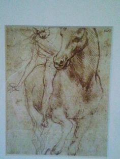 Detail of horse print/sketch #3