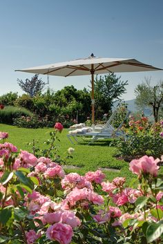 Villa Le Barone, a Boutique, Country house property, located in Tuscany, Italy Countryside Hotel, Country Retreats, House Property, Country House Hotels, Wellness Spa, Luxury Accommodation, Tuscany Italy, Villa, Relax