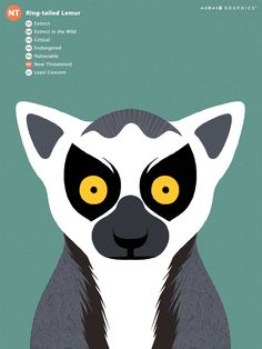 Save the Animals, IUCN Redlist Animals illustration. by ssgraphics, via Behance