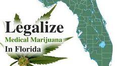 Marijuana Legalization – Father's Story Motivates High-Profile FL Attorney