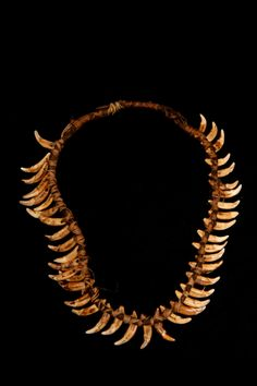 New Guinea Necklace    Dog teeth and fiber from the 1930s