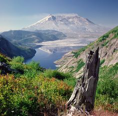 Mt. Saint Helens .. ( She is napping only)  Washington State Photo by Danielle D. Hughson
