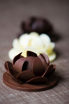 * fleurs en chocolat *