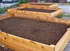 New vegetable garden at Cru