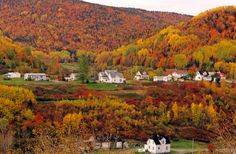 Gaspésie ranked in the top 10 in the world for its fall colors