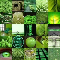 green....the best colour ;) juicy and morish!