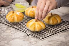 Cover with sprayed plastic wrap and allow to rise until double in size. Rhodes Dinner Rolls, Rhodes Rolls, Thanksgiving Deserts, Thanksgiving Parties, Thanksgiving Ideas, How To Make Pumpkin, How To Make Bread, Bread Making, Frozen Dinner Rolls
