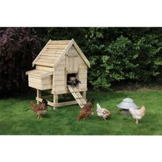 Rowlinson Chicken Coop Small - 5.2x4.1x3.3ft from Homebase.co.uk