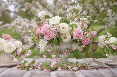 Spring Gallery @ Floret Flower Farm