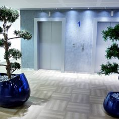 The Blob planter in shiny blue available from PlantFinderPro