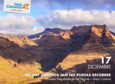 ¡No hay nada imposible!   #IslasCanarias365