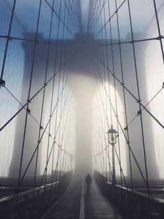 bridge & the walker