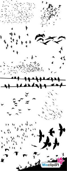Flocks of Birds - Free Photoshop Brushes