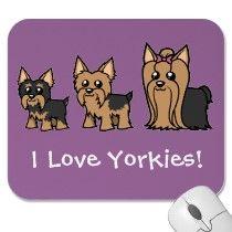 I <3 Yorkies!
