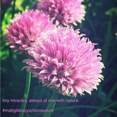 #mattgibbspsychicmedium #loa #spiritual #quote #universe #picoftheday #quoteoftheday #blue #happy #psychic