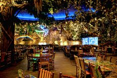 Rainforest Cafe Kansas City Closed