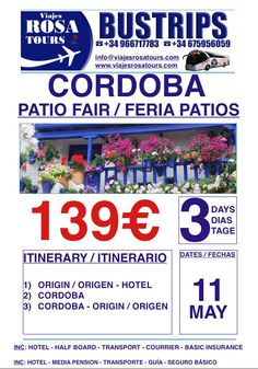 Feria de los patios en Córdoba  Tour al mejor precio!!! www.viajesrosatours.com info@viajesrosatours.com (+34)966717783  (+34)675956059