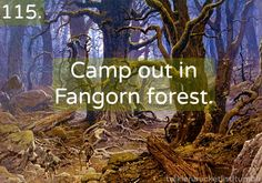 """With Legolas and Gimli. There is a reason that the forest name is """"Fangorn"""" you just know it is for fans like me"""