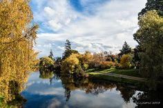 Deloraine - a pretty town in the north of Tasmania, Australia. by Angus. Gold Coast Australia, Rock Pools, Family Memories, Tasmania, Continents, Kiwi, Places Ive Been, Natural Beauty, Landscapes