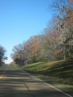 Natchez Trace Parkway ~ Mississippi