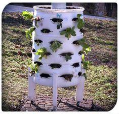DIY Vertical Garden Planter from a 55 Gallon Plastic Barrel - SHTF Preparedness