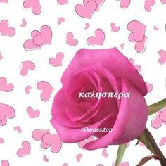Εικόνες καλησπέρας με καρδιές - eikones top Good Night, Good Morning, Princess Peach, Rose, Flowers, Nighty Night, Buen Dia, Pink, Bonjour