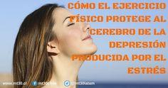 CÓMO EL EJERCICIO FÍSICO PROTEGE AL CEREBRO DE LA DEPRESIÓN PRODUCIDA POR EL ESTRÉS http://mt30.cl/blog/86-como-el-ejercicio-fisico-protege-al-cerebro-de-la-depresion-producida-por-el-estres…