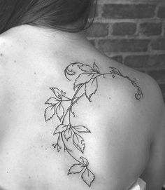 Nice vine tattoo of leaves on scapula
