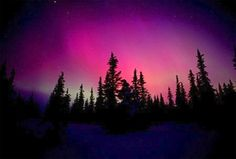 one day i would love to see the northern lights in alaska