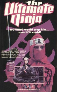 A visual history of classic VHS cover art. These covers make the films look much better than. Karate Movies, Kung Fu Movies, Vinyl Cover, Cover Art, Beastmaster Movie, Last Ninja, Martial Arts Movies, Cd Art, Shadow Warrior