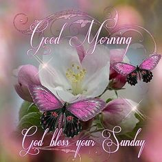 Good Morning ~ God Bless Your Sunday!