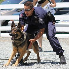Took this pic - Police Demonstration #K9 - South County Festival 2013