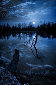 Photography of blue sky and night water clouds with trees reflections on cool lake. Moonlight and Night Sea View Beautiful Moon, Beautiful World, Beautiful Places, Foto Picture, Ciel Nocturne, Photo Dream, Blue Moon, Night Skies, Sky Night