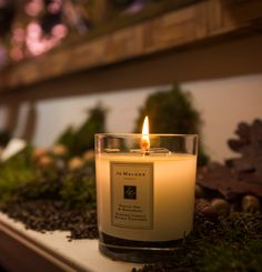 The Jo Malone London Townhouse. All dressed up to celebrate The English Oak. The perfect finishing touch? The bewitching scent of an English Oak & Redcurrant Candle, of course… Candle Jars, Candles, London Townhouse, Cream Aesthetic, Jo Malone, Old World, Earthy, Sweet Home, English