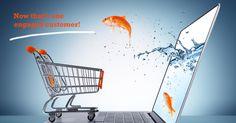 E-commerce concept. Goldfish in cart - e-commerce concept , Inbound Marketing, Ecommerce Seo, Ecommerce Website Design, Online Marketing, Internet Marketing, Affiliate Marketing, Web Design Services, Web Design Company, Website Development Company