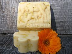 HANDCRAFTED SOAPS    Made with hand-rendered tallow, olive oil, and coconut oil. Goat milk soaps are made wit   h fresh goat milk from our small farm. Goat Farming, Goat Milk Soap, Small Farm, Soap Making, Coconut Oil, Goats, Moon, Homemade, Olive Oil