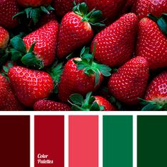Color Palette #3806
