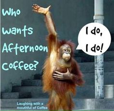 Afternoon coffee - exactly me - Coffee Talk, Coffee Is Life, I Love Coffee, My Coffee, Coffee Mugs, Coffee Lovers, Coffee Break, Happy Coffee, Coffee Room