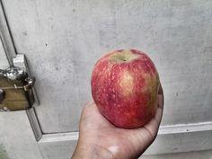 Apple jiji
