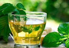 chá de ora pro nobis Ora Pro Nobis Planta, Relaxing Tea, Mint Oil, Organic Structure, Mint Plants, Active Ingredient, Natural, Health Benefits, Health Fitness