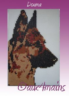 Dog german shepherd hama perler by aux4mains